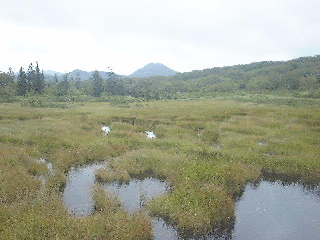神仙沼・沼付近の湿原(2)