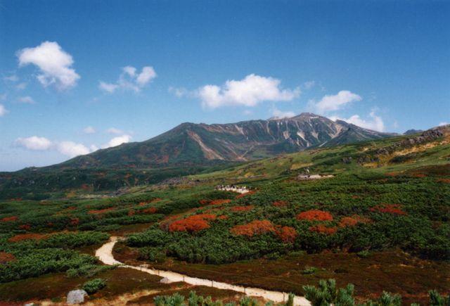 旭平からの風景(当麻岳・安足間岳)