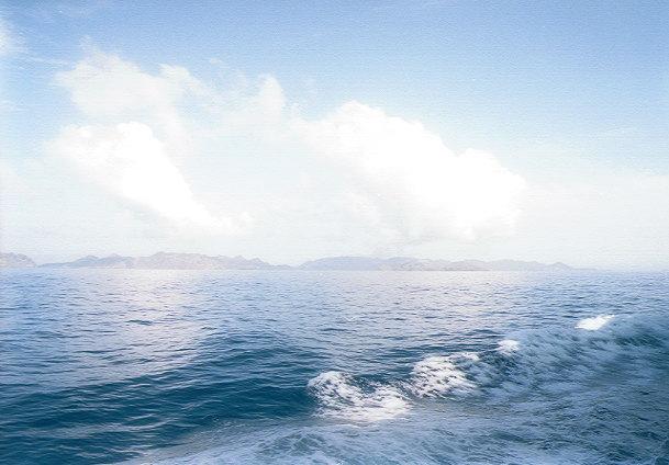 おがさわら丸から見た父島(3)