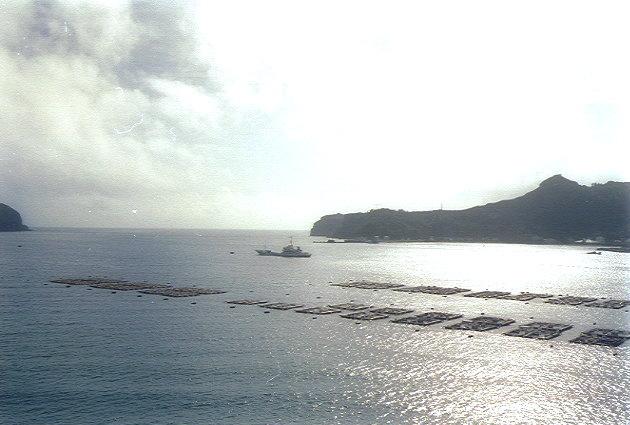 二見浦を進む漁船